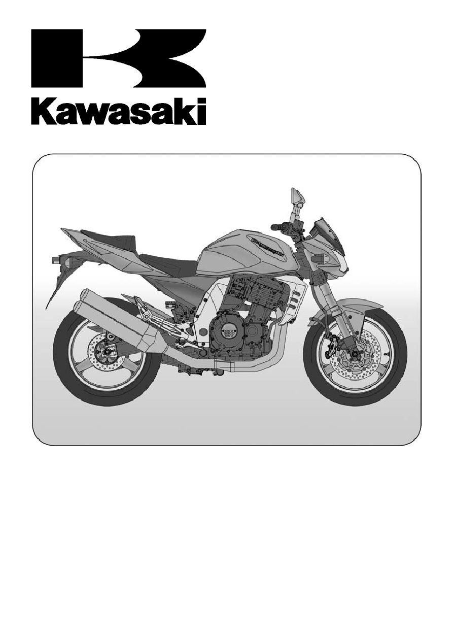 Kawasaki Z 1000 2005 Oil Temperature Gauge