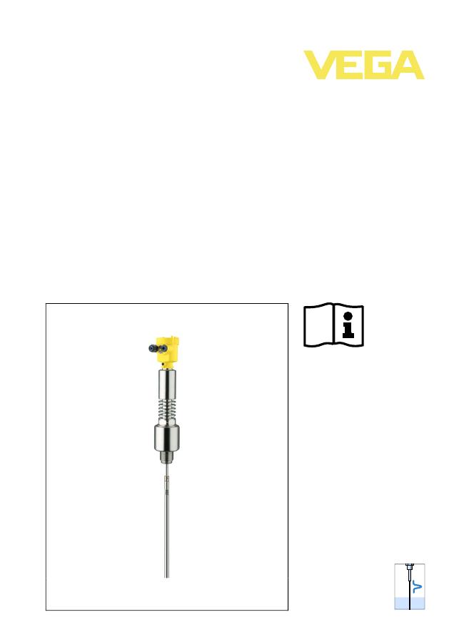 Vegaflex 81 руководство по эксплуатации - фото 11